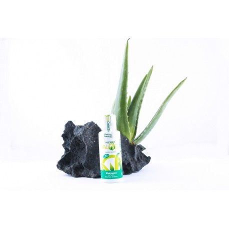 HIERRO ALOE SHAMPOO 100 ML